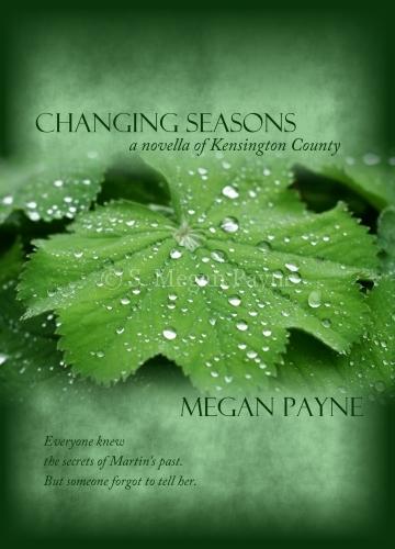 Christian Book Cover Design Inspiration ~ Book cover design s megan payne